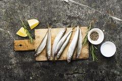 Свежий малый снеток рыб моря, сардина на простой предпосылке с кусками соли, розмаринового масла и лимона Взгляд сверху против ка Стоковая Фотография RF