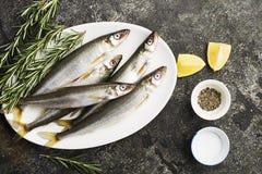 Свежий малый снеток рыб моря, сардина на простой предпосылке с кусками соли, розмаринового масла и лимона Взгляд сверху против ка Стоковое Изображение