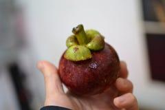 Свежий мангустан, на азиатском экзотическом рынке плода, Dali, Юньнань, Китай стоковые изображения