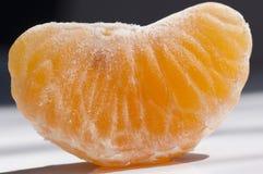 свежий мандарин Стоковая Фотография