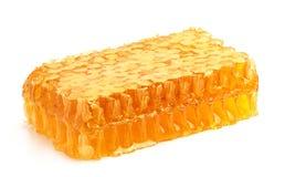 Свежий мед в гребне. Стоковое Фото