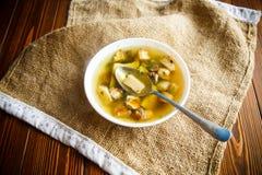 Свежий овощной суп с грибами леса Стоковое Изображение RF