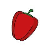Свежий овощ перца иллюстрация штока