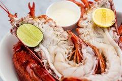 Свежий омар с соусом и известкой Стоковое фото RF