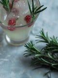 Свежий домодельный лимонад Стоковое Изображение RF