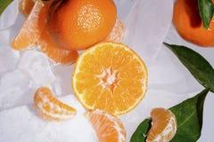 Свежий оранжевый плодоовощ мандарина с зелеными листьями замерзается на холодном голубом льде Стоковые Фото