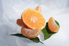 Свежий оранжевый плодоовощ мандарина с зелеными листьями замерзается на холодном голубом льде Стоковое Фото