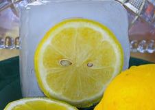 Свежий отрезок лимона в конце куба льда вверх стоковая фотография rf