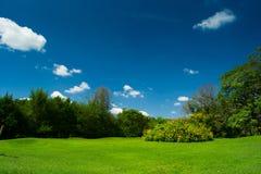 Свежий парк Стоковое фото RF