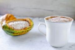 Свежий плодоовощ какао и горячая чашка какао стоковые изображения rf