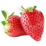 свежий плодоовощ клубники 2 изолированный на белой предпосылке Стоковые Фотографии RF