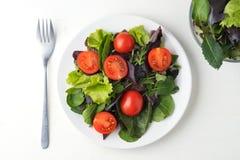 свежий покрашенный салат томата вишни с arugula, шлихтой базилика, шпината, салата и оливкового масла Селективный фокус стоковые изображения