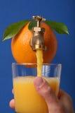 свежий помеец сока Стоковые Фотографии RF