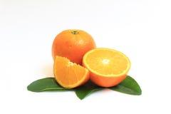 Померанцовый плодоовощ на белой предпосылке Стоковые Фото