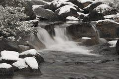 свежий поток Стоковые Изображения RF