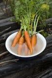 свежий пук морковей на старой предпосылке Стоковые Изображения