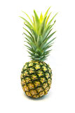 Свежий плодоовощ ананаса Стоковое Фото