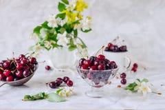 Свежий плодоовощ вишни в стеклянной вазе, другие блюда с ягодами и опарник с жасмином и wildflowers на светлой мраморной таблице  Стоковая Фотография RF