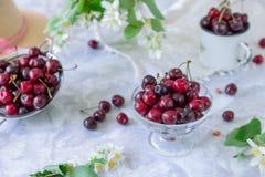 Свежий плодоовощ вишни в стеклянной вазе, другие блюда с ягодами и опарник с жасмином и wildflowers на светлой мраморной таблице  Стоковая Фотография