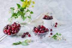 Свежий плодоовощ вишни в стеклянной вазе, другие блюда с ягодами и опарник с жасмином и wildflowers на светлой мраморной таблице  Стоковое Фото