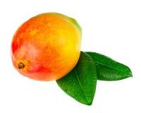 Свежий плодоовощ мангоа при листья зеленого цвета изолированные на белой предпосылке Стоковое Изображение RF
