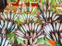 Свежий рыбный базар на порте Стамбула Стоковое Фото