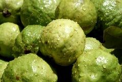 свежий рынок guavas Стоковая Фотография