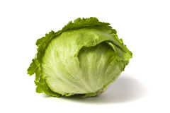 свежий салат айсберга Стоковые Изображения RF