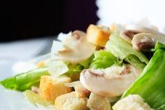 свежий салат грибов Стоковые Изображения RF