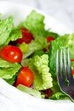 свежий салат макроса Стоковые Фото