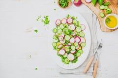 Свежий салат огурца редиски, белая предпосылка Взгляд сверху Стоковое Изображение RF