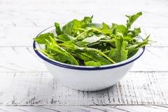 Свежий салат одуванчика стоковые изображения rf