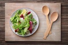 свежий салат плиты Стоковая Фотография RF