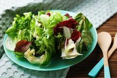 свежий салат плиты Стоковые Изображения