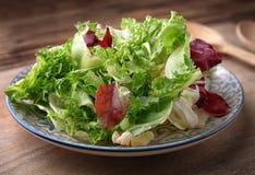 свежий салат плиты Стоковые Фото