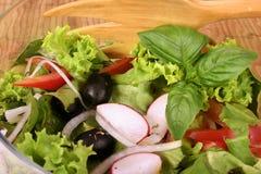 свежий салат сада Стоковые Изображения RF