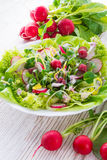 Свежий салат Стоковая Фотография