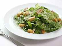 свежий салат Стоковое Изображение RF