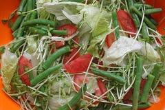 свежий салат Стоковые Фотографии RF