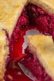 Свежий самодельный пирог вишни Сочная часть пирога вишни Кусок пирога с пульпой вишни Макрос Стоковое Изображение RF