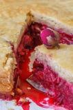 Свежий самодельный пирог вишни Сочная часть пирога вишни украшенная с малым подняла Кусок пирога с пульпой вишни Макрос Стоковые Изображения RF