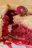 Свежий самодельный пирог вишни Сочная часть пирога вишни украшенная с малым подняла Кусок пирога с пульпой вишни Макрос Стоковая Фотография