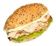 Свежий сандвич цыпленка и салата Стоковое Изображение