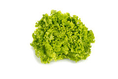 Свежий салат изолированный на белизне Стоковые Изображения RF