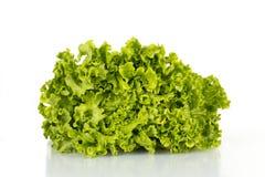 Свежий салат изолированный на белизне Стоковая Фотография