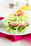 Свежий салат капусты с огурцом и редисками на белой плите Стоковые Фото