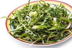 Свежий салат одуванчика стоковое изображение rf