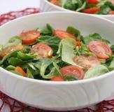 Свежий салат поля Стоковая Фотография RF