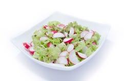 Свежий салат редиски и салата Стоковое фото RF
