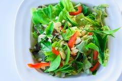 Свежий салат с зеленым чаем Стоковые Изображения